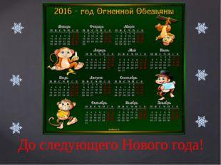 До следующего Нового года!
