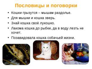 Пословицы и поговорки Кошки грызутся – мышам раздолье. Для мышки и кошка звер