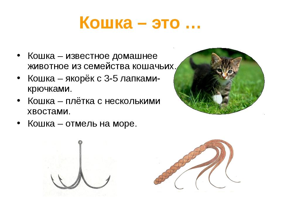 Кошка – это … Кошка – известное домашнее животное из семейства кошачьих. Кошк...