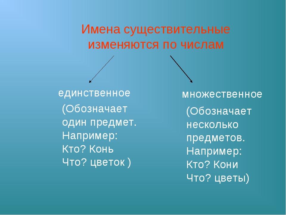 Имена существительные изменяются по числам единственное множественное (Обозна...