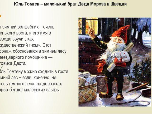 Юль Томтен – маленький брат Деда Мороза в Швеции Этот зимний волшебник – очен...
