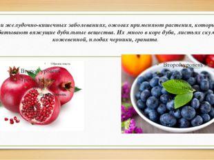 При желудочно-кишечных заболеваниях, ожогах применяют растения, которые выраб