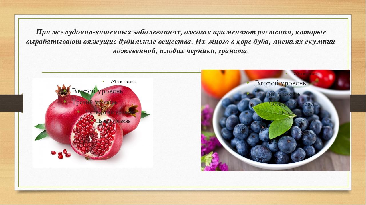 При желудочно-кишечных заболеваниях, ожогах применяют растения, которые выраб...