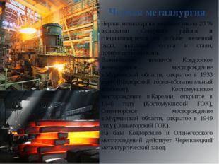 Черная металлургия Черная металлургия занимает около 20 % экономики Северного