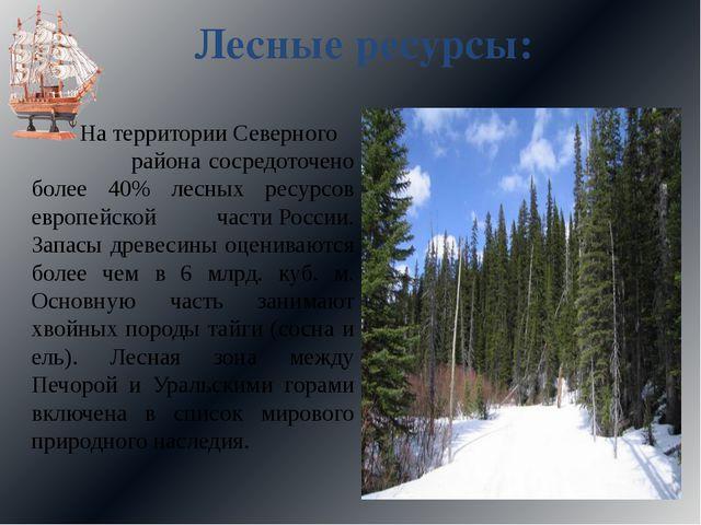 Лесные ресурсы: На территории Северного района сосредоточено более 40% лесных...