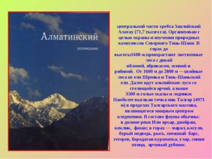 Алмати́нский госуда́рственный приро́дный запове́дник расположен в центральной