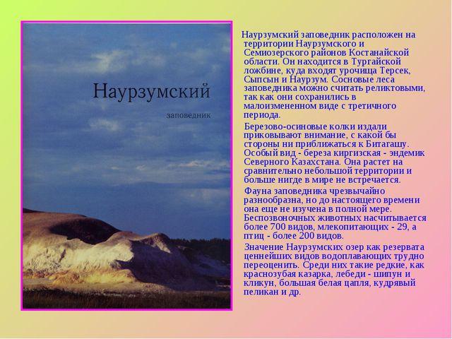 Презентация на тему Заповедники Казахстана  Наурзумский заповедник расположен на территории Наурзумского и Семиозерского