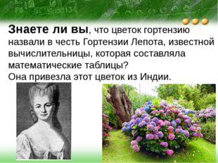 Знаете ли вы, что цветок гортензию назвали в честь Гортензии Лепота, известно