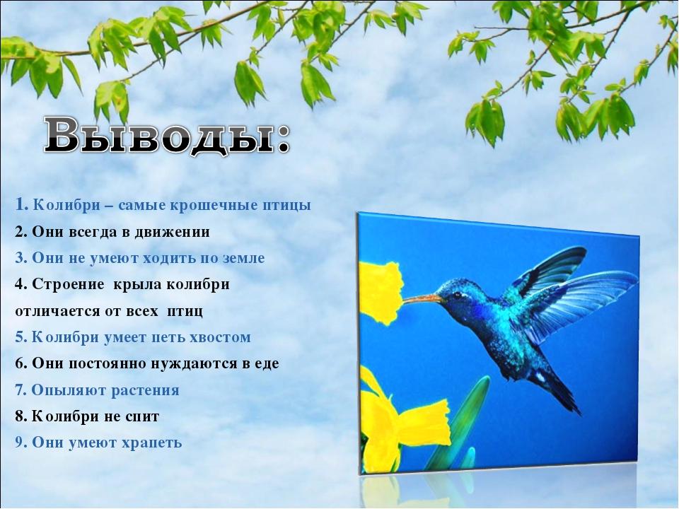1. Колибри – самые крошечные птицы 2. Они всегда в движении 3. Они не умеют х...