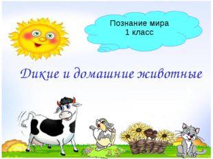 Дикие и домашние животные Познание мира 1 класс