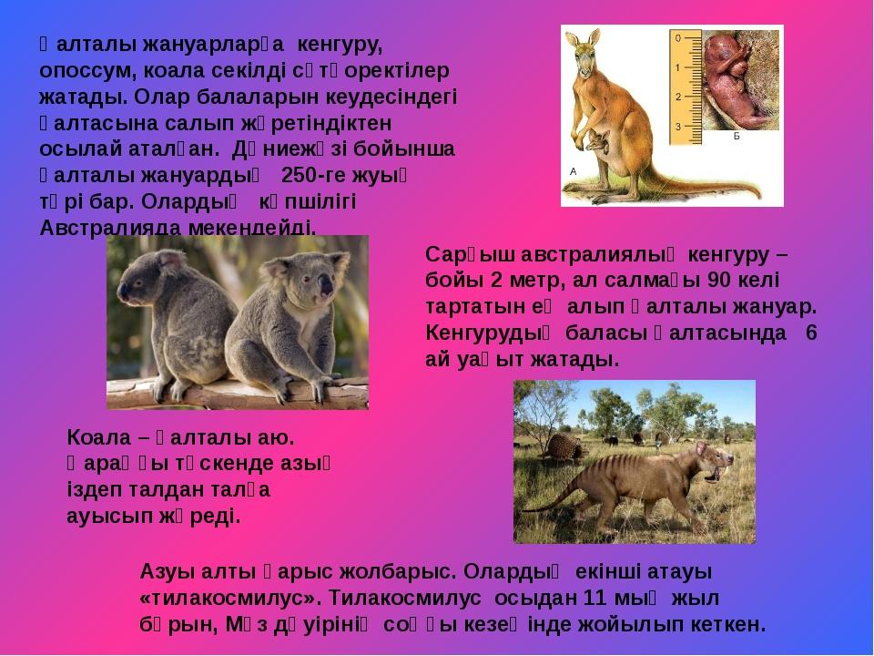 Қалталы жануарларға кенгуру, опоссум, коала секілді сүтқоректілер жатады. Ол...
