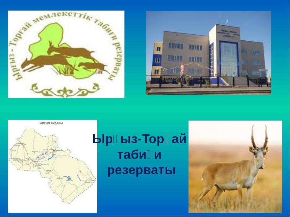 Ырғыз-Торғай табиғи резерваты