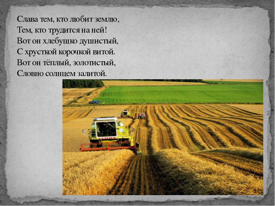 Слава тем, кто любит землю, Тем, кто трудится на ней! Вот он хлебушко душисты...