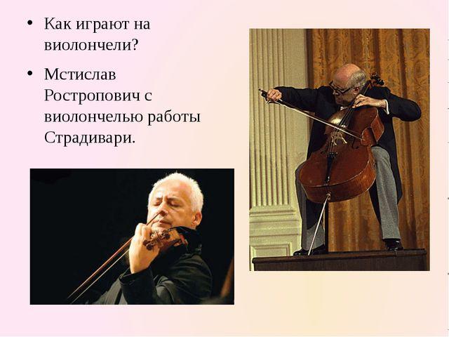 Как играют на виолончели? Мстислав Ростропович с виолончелью работы Страдива...