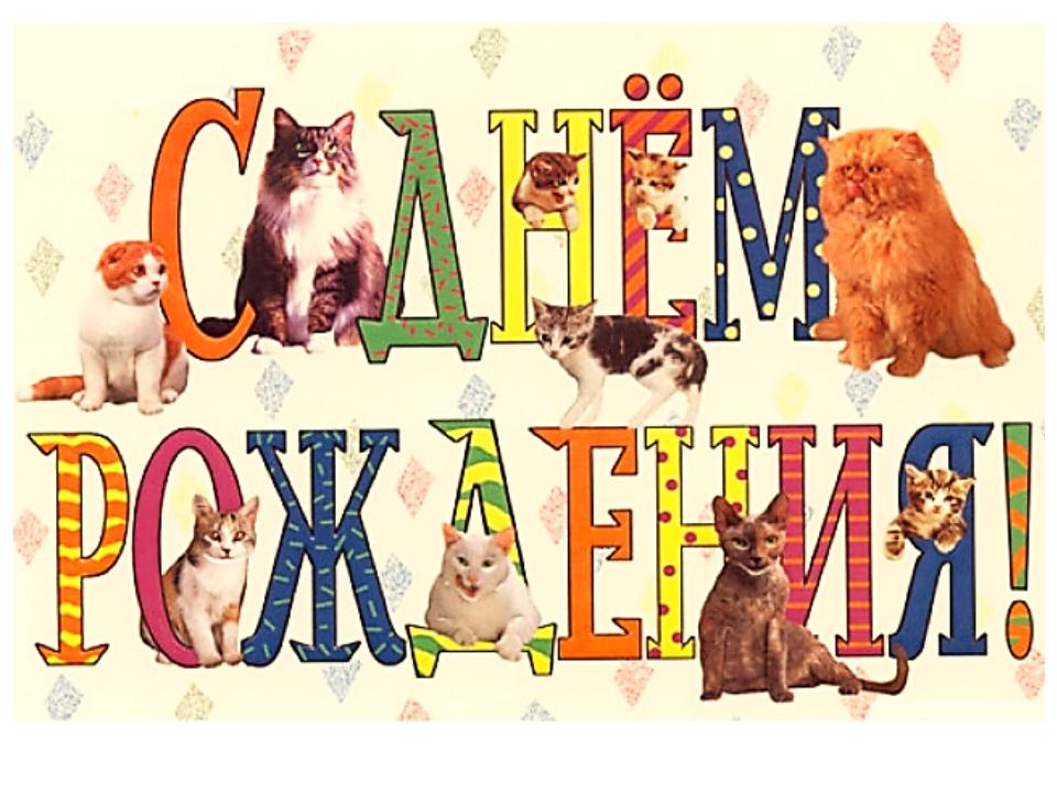 Картинки с котами и надписями с днем рождения
