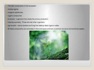 The main components of the ecosystem climate regime, inorganic substances, or