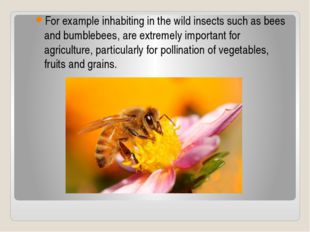 For example inhabiting in the wild insects such as bees and bumblebees, are e