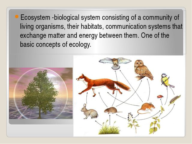 Ecosystem -biological system consisting of a community of living organisms, t...