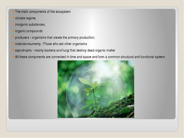 The main components of the ecosystem climate regime, inorganic substances, or...
