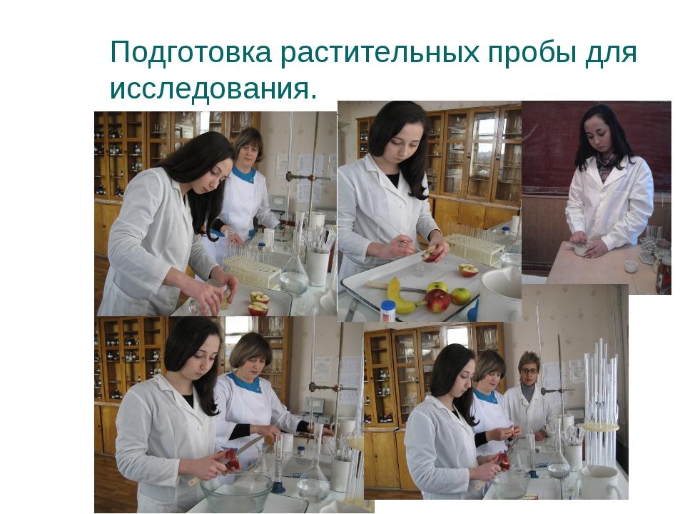 Подготовка растительных пробы для исследования.
