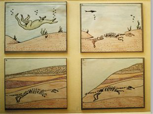Окаменелости-ископаемые остатки растений и животных прошлых геологических эпо