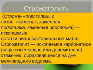 Строматолиты (Строма-«подстилка» и литос-«камень»,каменная подстилка,кам