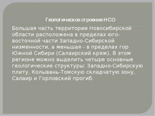 Геологическое строение НСО Большая часть территории Новосибирской области рас