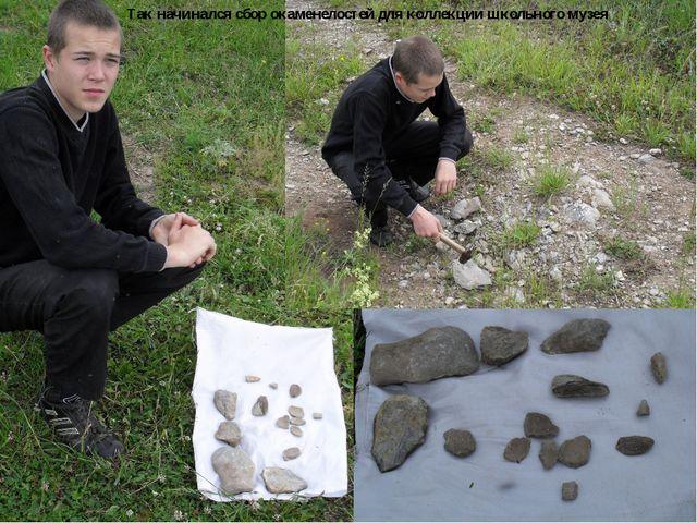 Так начинался сбор окаменелостей для коллекции школьного музея
