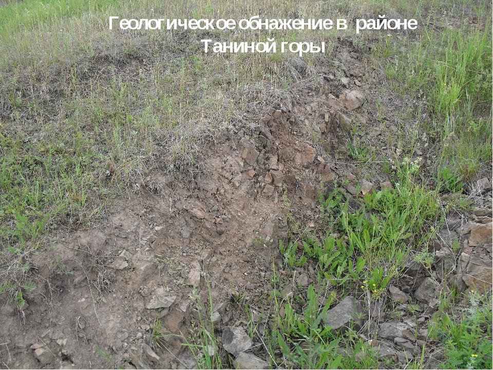 Геологическое обнажение в районе Таниной горы