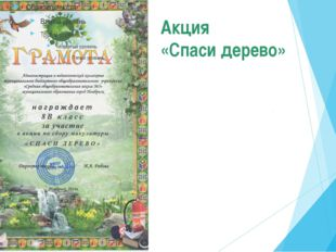 Акция «Спаси дерево»