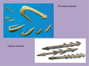 Костяные крючки Гарпун, мезолит