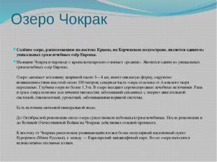 Озеро Чокрак Солёное озеро, расположенное на востоке Крыма, на Керченском пол