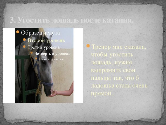 3. Угостить лошадь после катания. Тренер мне сказала, чтобы угостить лошадь,...