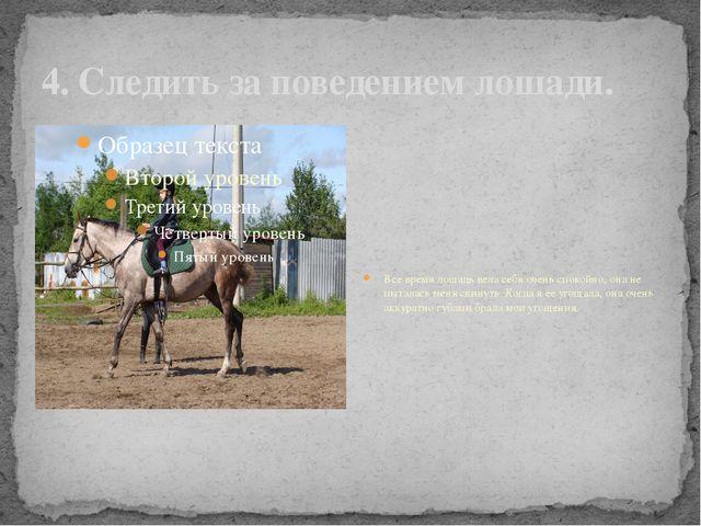 4. Следить за поведением лошади. Все время лошадь вела себя очень спокойно, о...