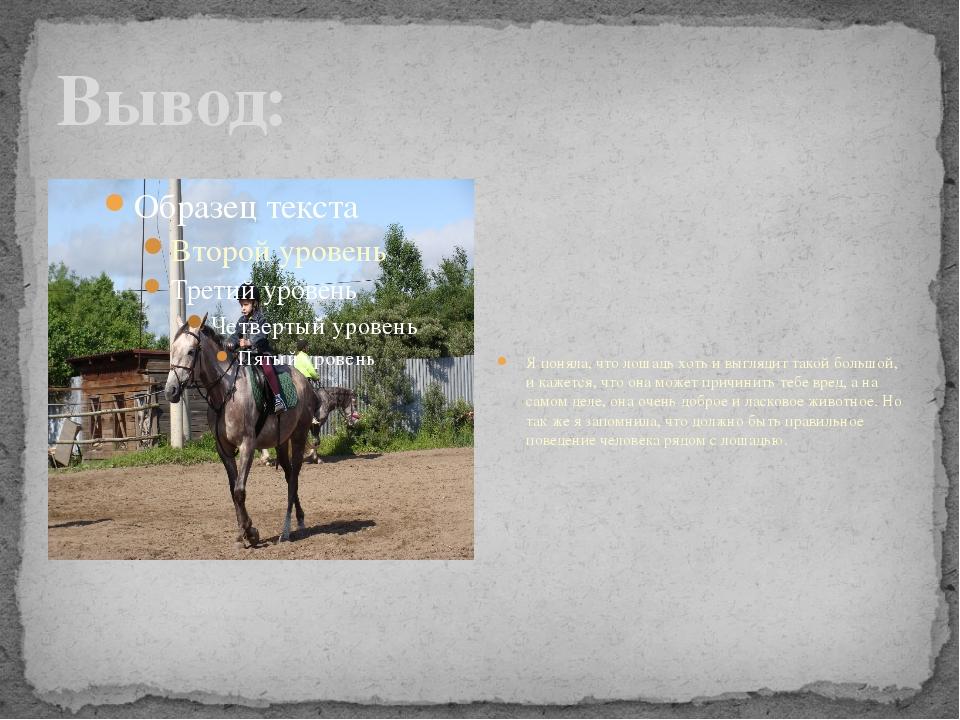 Вывод: Я поняла, что лошадь хоть и выглядит такой большой, и кажется, что она...