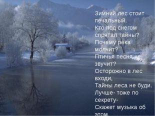 Зимний лес стоит печальный. Кто под снегом спрятал тайны? Почему река молчит?