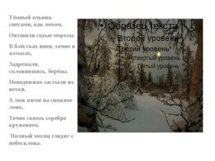 Тёмный ельник снегами, как мохом, Опушили седые морозы. В блёстках инея, точн