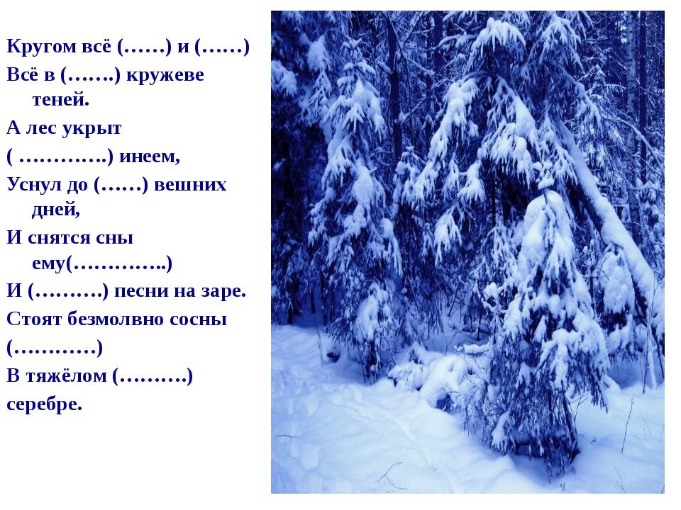 Кругом всё (……) и (……) Всё в (…….) кружеве теней. А лес укрыт ( ………….) инеем...