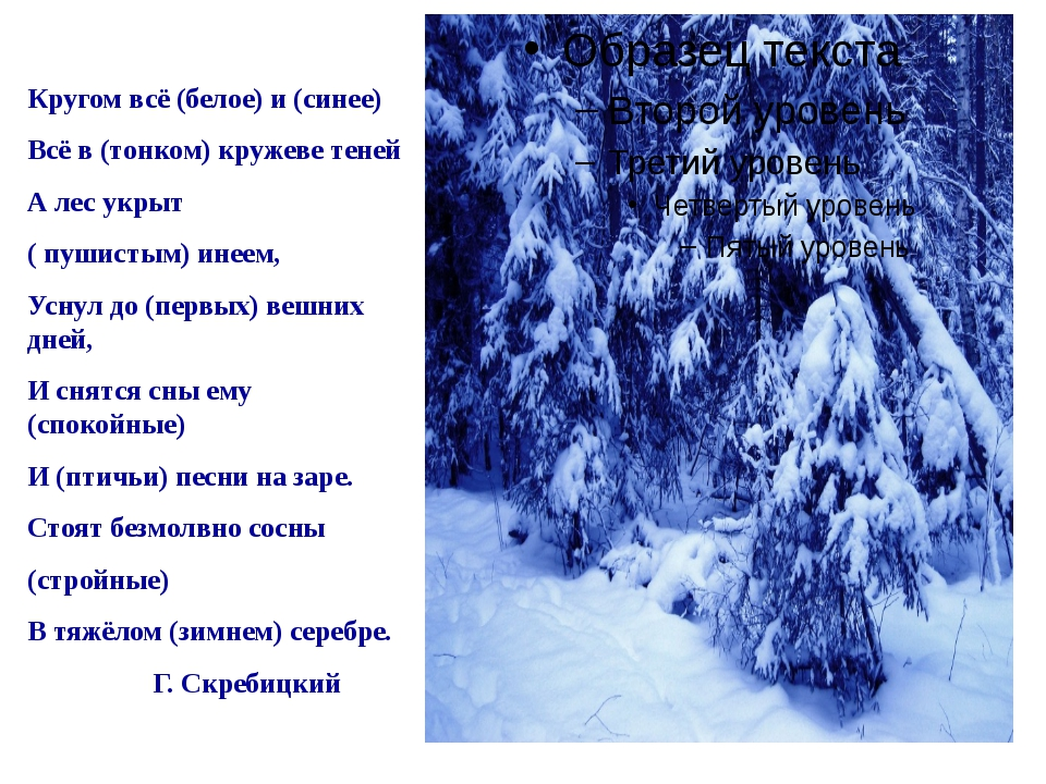Кругом всё (белое) и (синее) Всё в (тонком) кружеве теней А лес укрыт ( пушис...