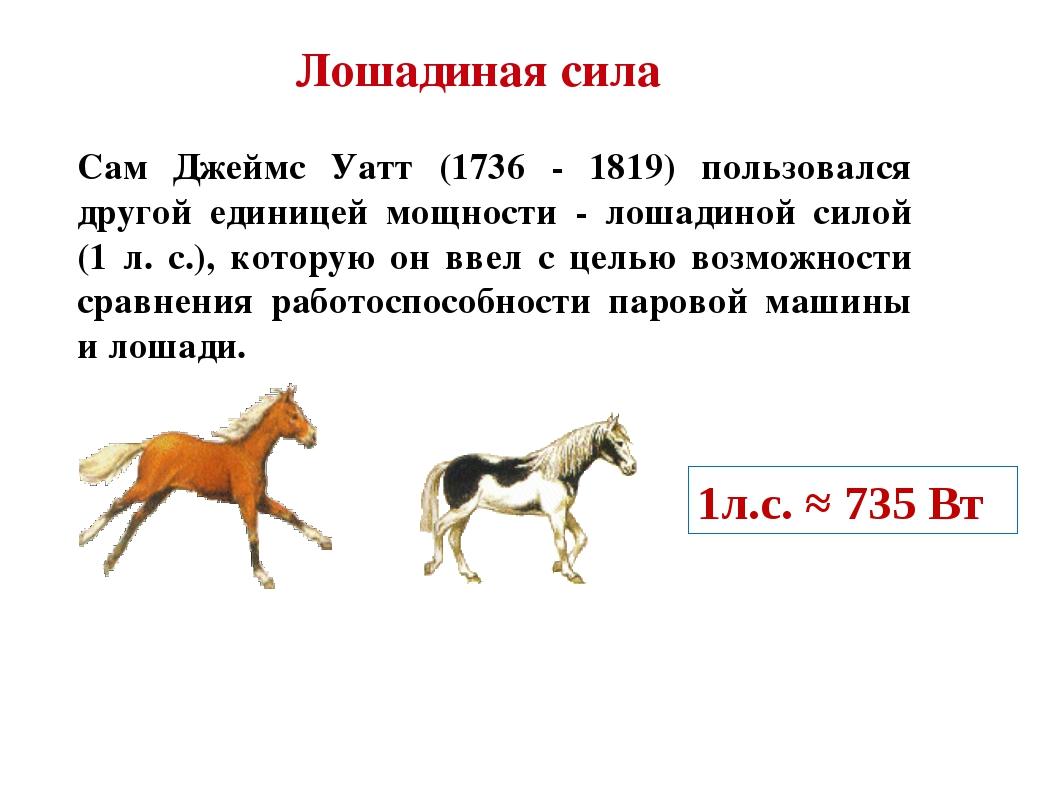 Лошадиная сила Сам Джеймс Уатт (1736 - 1819) пользовался другой единицей мощн...