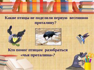 Какие птицы не поделили первую весеннюю проталину? Кто помог птицам разобрат