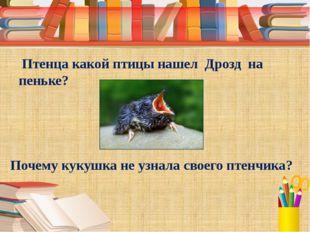 Птенца какой птицы нашел Дрозд на пеньке? Почему кукушка не узнала своего пт