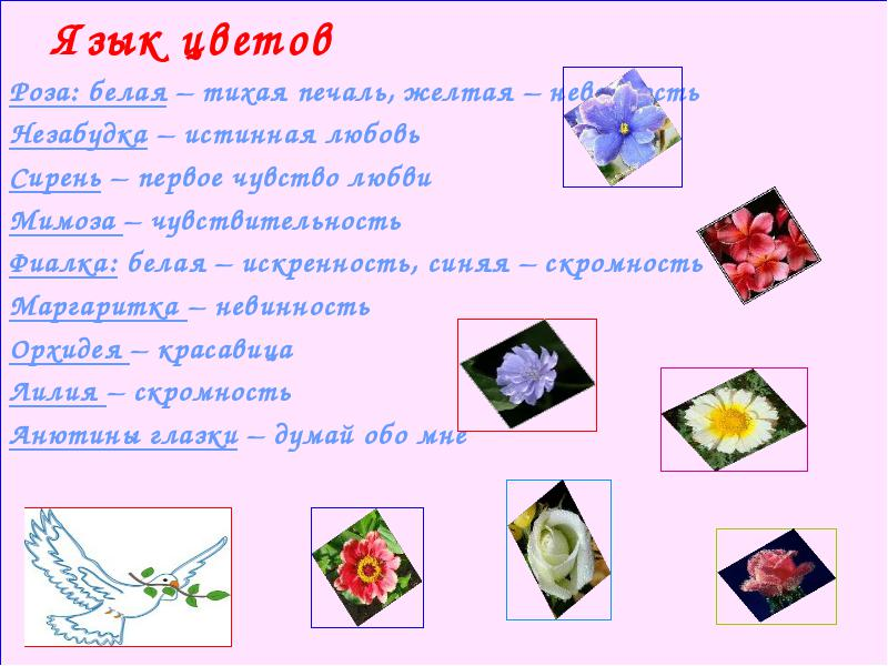hello_html_m1036172a.jpg