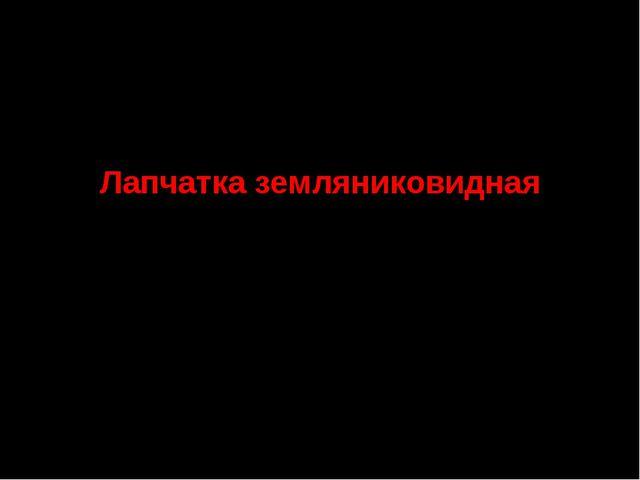 8. Семейство Розоцветные Лапчатка земляниковидная СТАТУС. III г категория. Ре...