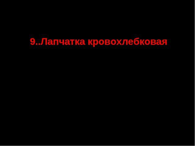 9..Лапчатка кровохлебковая СТАТУС. III г категория. Редкий вид, северная гра...