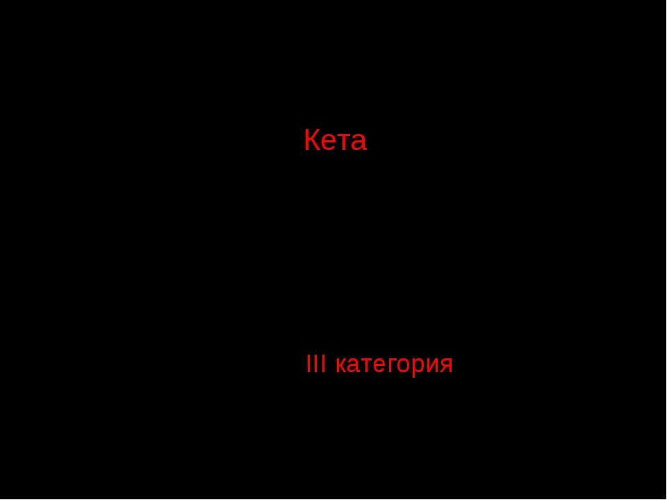 Кета Oncorhynchus keta (Walbaum, 1792) Отряд Лососеобразные – Salmoniformes...