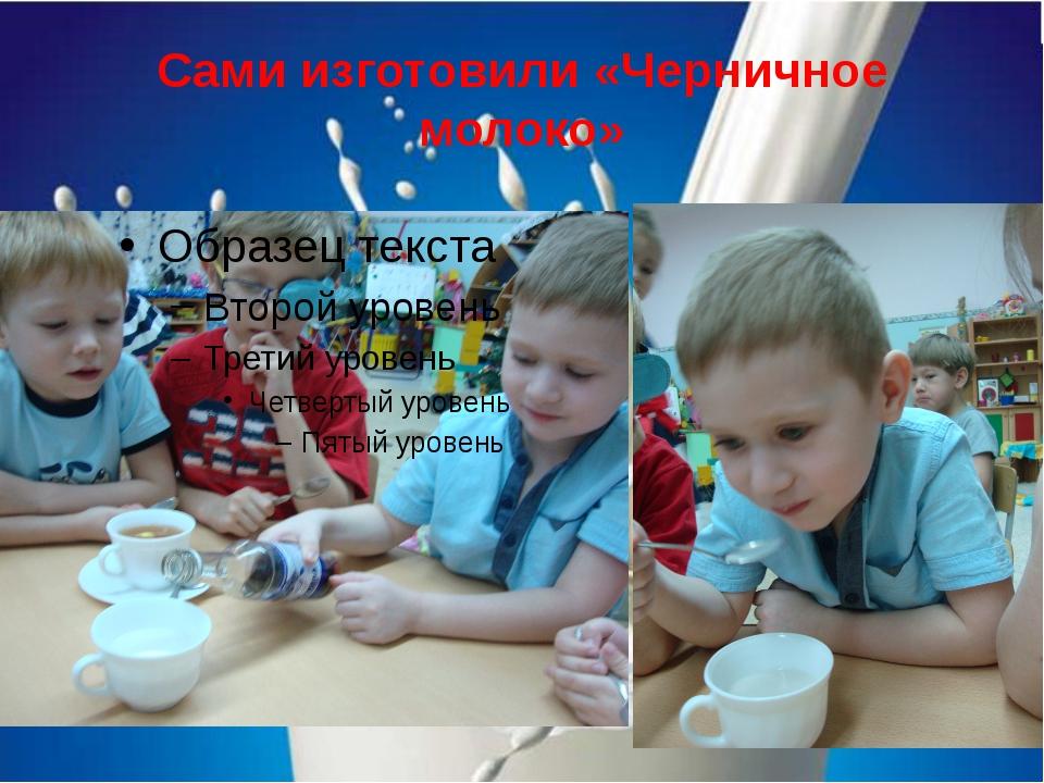 Сами изготовили «Черничное молоко»