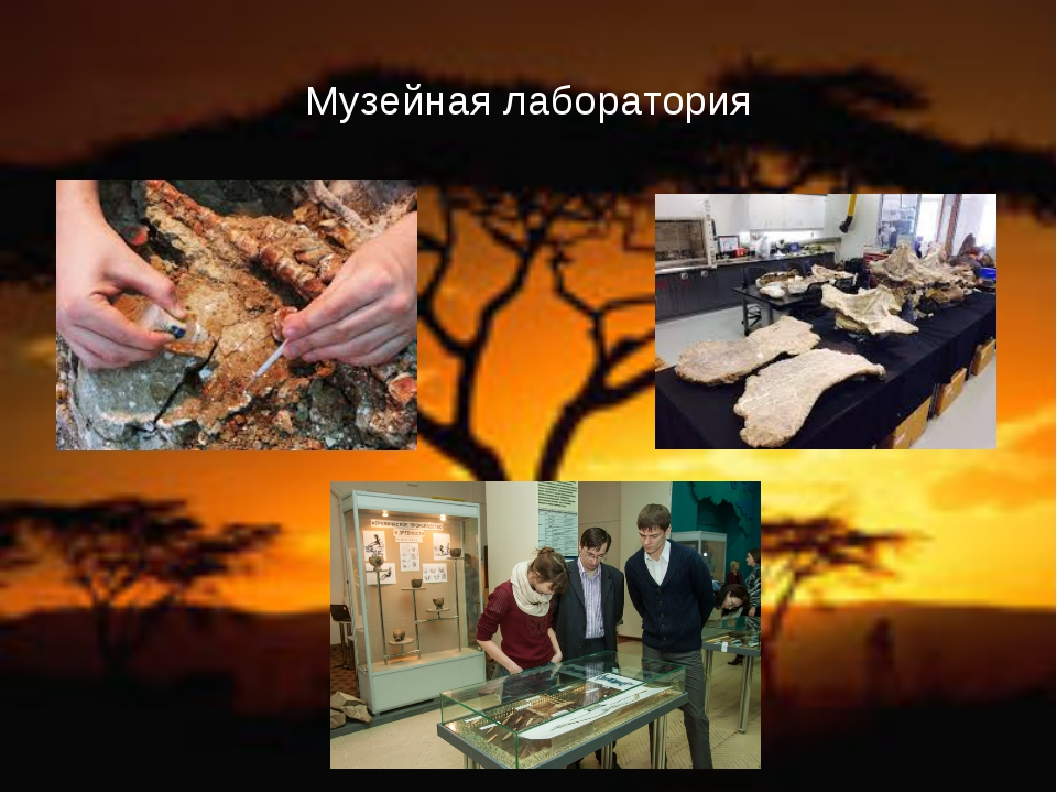 Музейная лаборатория