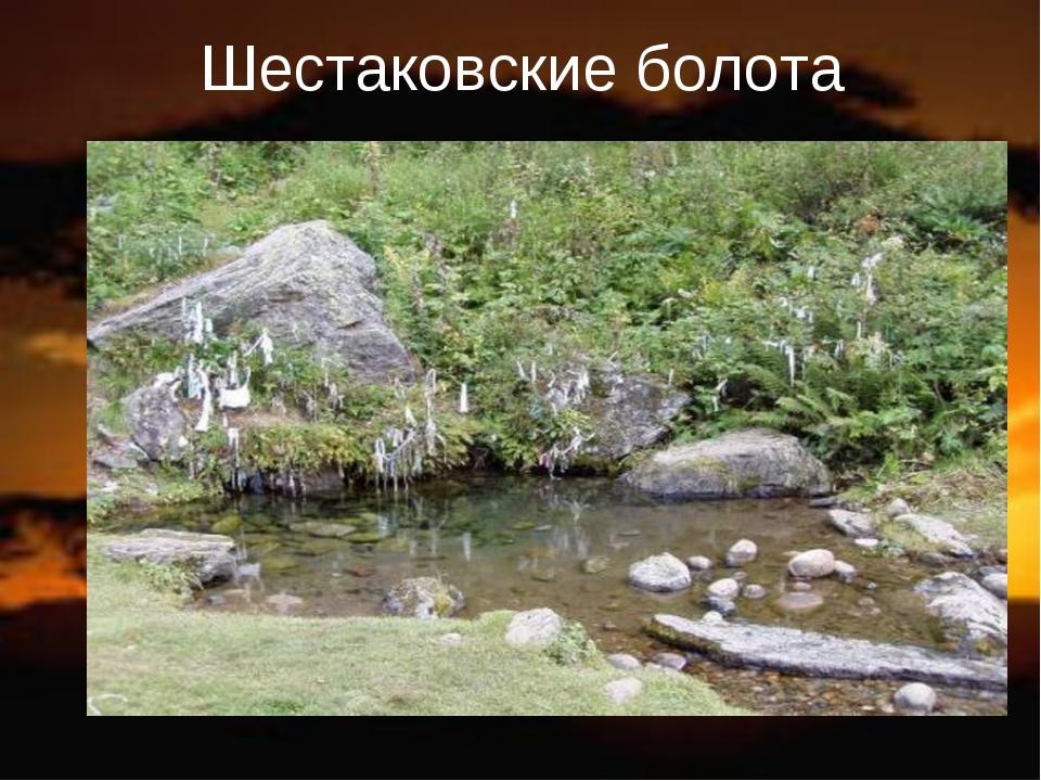 Шестаковские болота