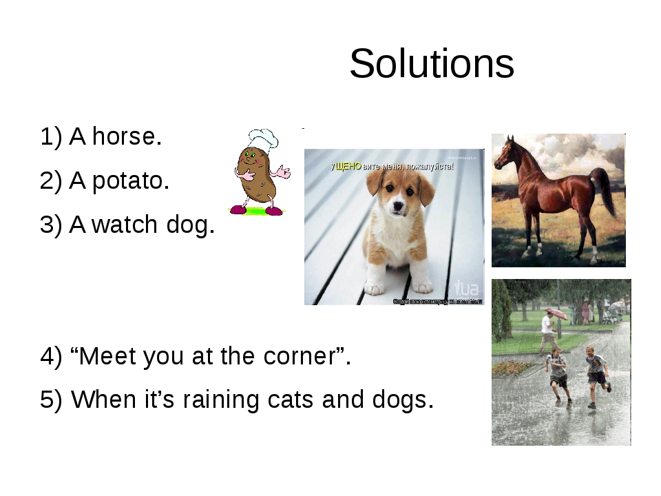 "Solutions 1) A horse. 2) A potato. 3) A watch dog. 4) ""Meet you at the corne..."